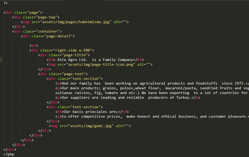 ozel yazılım web sayfası avantajları
